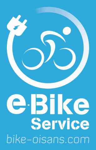 Ebike service